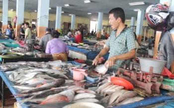 Budidaya Ikan Air Tawar Peluang Bisnis Menggiurkan