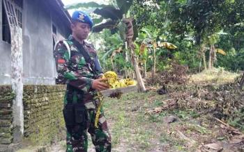 uAnggota TNI AU melepas pita garis polisi (police line) yang dipasang di rumah-rumah warga Gang Banteng, Pangkalan Bun, Senin (27/6/2016). BORNEO/CECEP