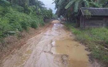 Beginilah kondisi saat ini badan Jalan Danau Mare di Desa Samba Danum, Kecamatan Katingan Tengah yang sudah belasan tahun tidak pernah diperbaiki. BORNEONEWS/HAIRUL SALEH