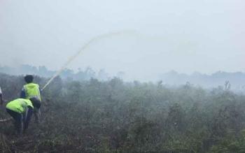 Petugas pemadam kebakaran memadamkan api di lahan gambut milik warga di Jalan Pelita, Sampit. BPBD mencatat ada 79 desa dan kelurahan di Kotim rawan Karhutla. BORNEONEWS/RAFIUDIN