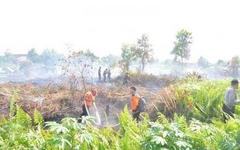 Tampak para tim satuan tugas (Satgas) penanganan kebakaran hutan dan lahan di Kotim berjibaku memadamkan api yang membakar lahan kosong milik warga di daerah itu. BORNEONEWS/RAFIUDIN