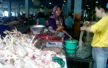 Penjual ayam potong di PPM Sampit sedang menunggu pembeli, beberapa waktu lalu. Tingginya harga ayam potong dan daging sapi, membuat pedagang warung makan, dan penjual pentol mengeluh. BORNEONEWS/M. HAMIM