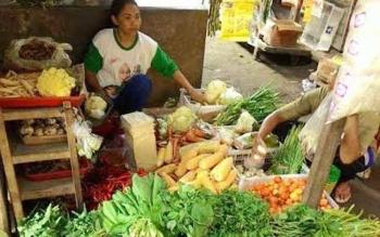 Pedagang sayur mayur di Kabupaten Kapuas. Kepala BPPKP Kapuas, Suryadinoor, Senin (26/9/2017), mengingatkan agar waspada jika mengkonsumsi pangan, terutama makanan olahan. BORNEONEWS/DOK