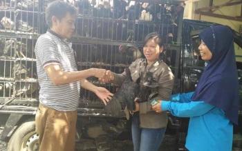 Kepala Diskantannak Barito Utara, Setia Budi (kiri) menyerahkan ayam buras kepada ketua kelompok tani. Diskantannak Barut, menyerahkan 1000 ekor ayam buras kepada kelompok-kelompok tani. BORNEONEWS/RAMADANI