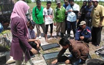 Distanak Sukamara dan Balai Pengkajian Teknologi Pertanian Kalteng memberikan pelatihan kepada petani di Desa Sei Pasir, Kecamatan Pantai Lunci. Distanak canangkan dua desa mandiri benih. BORNEONEWS/NORHASANAH