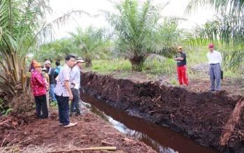 Pemilik lahan, Ahmad syar'i, yang juga Ketua KPU Kalimantan Tengah (kanan bertopi) saat melakukan pengecekan di lapangan, bersama Camat dan BMSDA. BORNEONEWS/M. MUCHLAS ROZIKIN