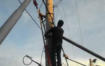 Ilustrasi: Petugas sedang memperbaiki jaringan listrik. Masa percobaan penggunaan jaringan PLN Rayon Buntok, Barito Selatan, Rabu (5/10/2016), dikeluhkan warga. BORNEONEWS/PPOST/H. LAILY MANSYUR