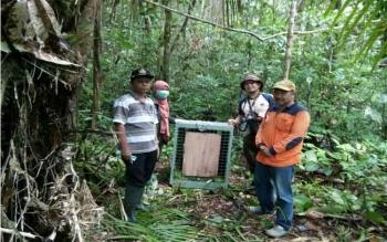 Camat Marikit, Kalpin (kiri) bersama pihak Yayasan BOS Nyaru Menteng saat pelepasliaran 4 individu orangutan di Sepan Apoi, Sabtu (8/10). BORNEONEWS/ISTIMEWA