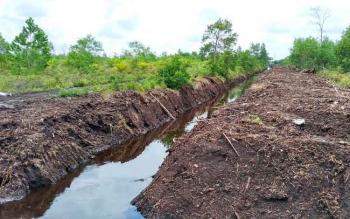 Bentangan kanal baru di wilayah Kecamatan Sebangau Kota Palangka Raya yang baru selesai dikeruk, Rabu (12/10/2016). BORNEONEWS/RONI SAHALA