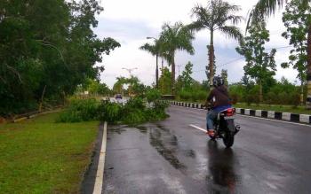 BPBD Murung Raya Ingatkan Waspadai Cuaca Ekstrem