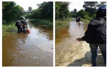 Jalan Pendang-Provinsi sejak tiga hari terakhir, terendam banjir, tepatnya daerah jembatan Maduit menuju jembatan Ihi, di Kecamatan Dusun Utara, Barito Selatan (Barsel), Kalimantan Tengah. BORNEONEWS/URIUTU DJAPER
