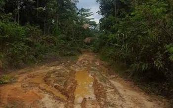 Jalan masuk menuju Desa Tanjung Harapan, Kecamatan Gunung Purei. Ketua Komisi A DPRD Barut, saat mencoba masuk ke desa tersebut. BORNEONEWS/DOK