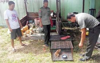 Komandan BKSDA Pos Sampit Muriansyah sedang berbincang kepada pemilik satwa liar saat penyerahan, Rabu (26/10/2016).