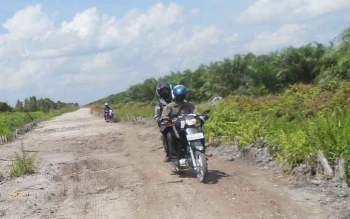 Ruas jalan dari Kecamatan Maliku ke Sebangau Kuala, Kabupaten Pulang Pisau, Kalimantan Tengah membutuhkan anggaran ratusan miliar hingga fungsional, dan aman dilalui. BORNEONEWS/JAMES DONNY
