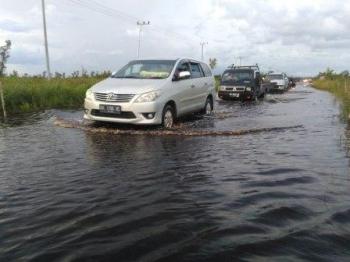 Jalan lintas Kalimantan di Kahayan Tengah terendam banjir.