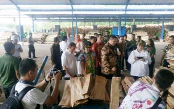 Menteri Lingkungan Hidup dan Kehutanan Siti Nurbaya Bakat bersama Gubernur Kalimantan Tengah Sugianto Sabran mengunjungi pabrik pengolahan sengon di Wonogiri, Jawa Tengah. BORNEONEWS/IST