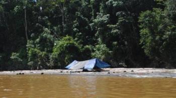 Inilah ribuan potong kayu yang dimilirkan ke Sungai Barito tersebut. BORNEONEWS/RAMADANI