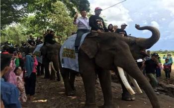 Menpora Imam Nahrawi menaiki gajah sebelum acara resmi Festival Pawai Budaya Way Kambas 2016, di Lampung Timur, Jumat (11/11/2016). Menpora ingin festival ini lebih mendunia, dengan menggelar event olahraga. BORNEONEWS/KEMENPORA