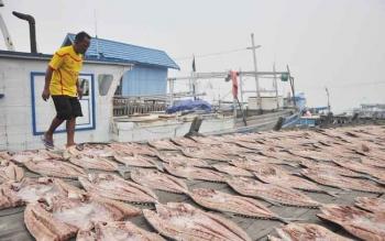 Hasil tangkapan ikan nelayan, dijemur. Bupati Barito Utara, H Nadalsyah menargetkan pekerjaan jalan dari Simpang Desa Malawen, menuju Kelurahan Lahei 1. BORNEONEWS/RAMADANI
