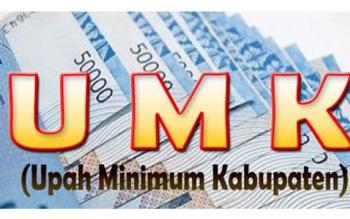 Ilustrasi Upah Minimum Kabupaten.