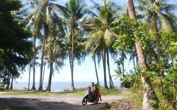 Produksi Minyak Kelapa Warga Pantai Lunci Sukamara Masih Rendah