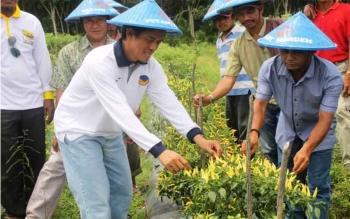 Anggota Komisi IV DPR RI, Hamdhani bersama para petani NasDem, di Desa Kubu, Kecamatan Kumai, Kotawaringin Barat, Sabtu (26/11/2016). Para petani itu sukses mengembangkan tanaman holtikultura. BORNEONEWS/DOK