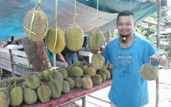 Seorang warga menunjukkan buah durian yang ia beli di tepi Jalan Trans Kalimantan, tepatnya daerah Kereng Humbang Kecamatan Katingan Hilir, Selasa (29/11/2016). BORNEONEWS/ABDUL GOFUR