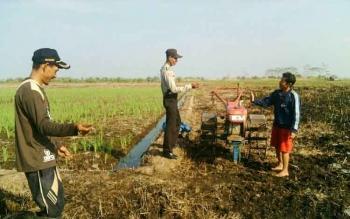 Petani di Desa Teluk Pulai menggunakan hand tractor bantuan untuk mengolah lahan. Bantuan ini harus mendapat pengawasan agar tidak disalahgunakan. BORNEONEWS/FAHRUDDIN FITRIYA