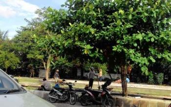 Pengerjaan taman kota di Jalan Garuda bekas pedagang bunga yang telah di relokasi ke Jalan G.Obos Ujung, Minggu (4/12/2016). BORNEONEWS/TESTI PRISCILLA