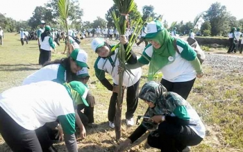 Puluhan tamu undangan launching Kebun Raya Katingan menanam pohon kelapa gading sebslum acara launching, Selasa (6/12).BORNEONEWS/ABDUL GOFUR