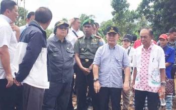Menteri LHK Tinjau Lokasi Pabrik Pengolahan Sengon di Pulang Pisau