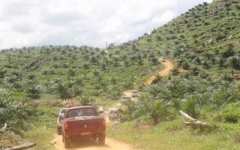 Tampak konvoi kendaraan pejabat Kotim melintasi di jalan berlumpur menuju Kecamatan Antang Kalang saat mereka melakukan kunjungan kerja. BORNEONEWS/RAFIUDIN