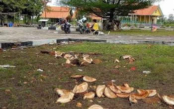 Sampah kulit buah durian mengotori halaman Taman Permata Sukma, di Jalan Tjilik Riwut, Sukamara.