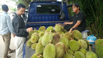 Harga Durian Capai Rp100 Ribu per Buah