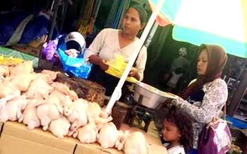 Pedagang usai menimbang ayam potong yang dibeli konsumen di Pasar Indra Sari Pangkalan Bun. Kenaikan harga cabai rawit baru-baru ini diikuti oleh kenaikan harga ayam potong. (BORNEONEWS/CECEP HERDI)