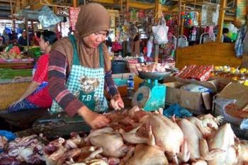 Pedagang ayam potong di Pangkalan Bun, Kotawaringi Barat. Sejak pertengahan Desember 2016 harga ayam potong sudah naik. Harga normal Rp30 ribu per kilogram, kini sudah Rp45 ribu. BORNEONEWS/CECEP HERDI