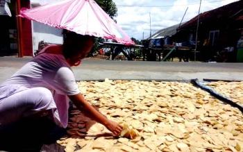Pekerja pembuatan kerupuk ikan Tenggiri di Kuala Pembuang saat menjemur kerupuk, Minggu (8/1/2017).(BORNEONEWS/PARNEN)