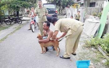 Petugas dari Dinas Peternakan dan Kesehatan Hewan Kabupaten Kotawaringin Barat saat memberikan vaksin rabies. BORNEONEWS/FAHRUDDIN FITRYA