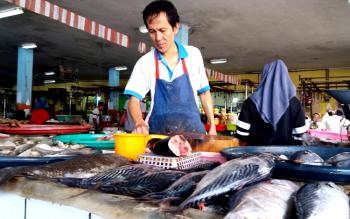 Seorang pedagang ikan di PPM Sampit sedang menyusun ikan yang dijualnya. (BORNEONEWS/M. HAMIM)