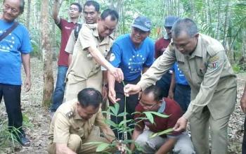 Wakil Bupati Katingan Sakariyas saat menanam rotan bersama anggota Yayasan Kolaborasi Rotan Indonesia di Desa Tumbang Liting. BORNEONEWS/ABDUL GOFUR