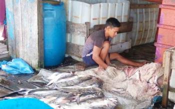 Pengusaha ikan asin di Kecamatan Jelai, Kabupaten Sukamara. Musim hujan membuat penjemuran ikan asin kurang maksimal, sehingga kualitasnya menurun. BORNEONEWS/NORHASANAH
