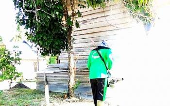 Fogging atau pengasapan yang dilakukan untuk mencegah perkembangbiakan nyamuk demam berdarah.