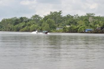 Daerah Aliran Sungai Kahayan. BORNEONEWS/JAMES DONNY