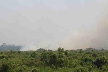Kebakaran lahan yang terjadi di Lamandau, beberapa waktu lalu. BORNEONEWS/HENDI NURFALAH