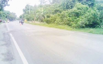 Kondisi Jalan Trans Kalimantan km 3, Desa Anjir Mambulau Barat, Kecamatan Kapuas Timur, Kuala Kapuas perlu perhatian pemerintah. Dalam sebulan, sudah terjadi 12 kecelakaan di jalur tersebut. BORNEONEWS/DJIMMY NAPOLEON