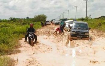Sejumlah kendaraan terjebak kubangan lumpur di Jalan Pangkalan Bun-Kotawaringin Lama.