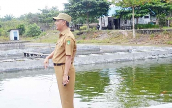 Wakil Bupati Sukamara, Windu Subagio saat mengunjungi Balai Benih Ikan (BBI) di Dusun Terantang Desa Natai Sedawak Kecamatan Sukamara beberapa waktu lalu. BORNEONEWS/NORHASANAH