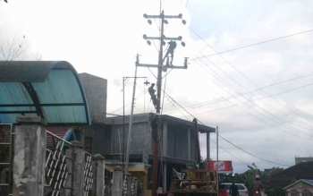 Sejumlah karyawan PLN Rayon Muara Teweh memasang isolator listrik dalam rangka peremajaan dan perawatan jaringan listrik.