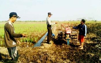 Warga Desa Teluk Pulai Kecamatan Kumai saat mengoperasikan alat mesin pertanian bantuan dari pemerintah.
