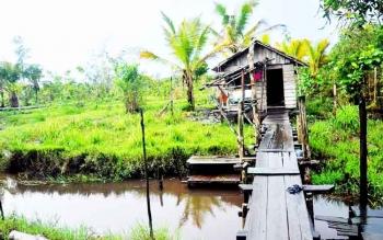 Salah satu rumah warga di Desa Sungai Sekonyer.